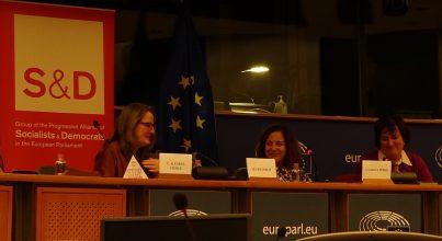 Chelo on panel European Parliament