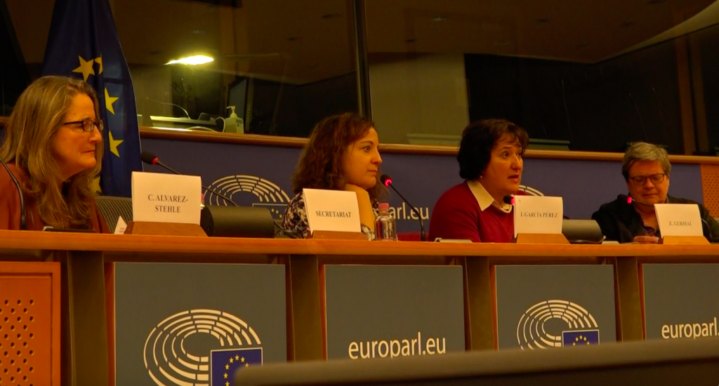 MEP Zita Gurmai at Sands of Silence screening at the European Parliament